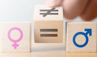 Webinaire : La Parité et l'Égalité professionnelle entre les Hommes et les Femmes